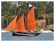 Red Sails Race